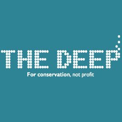 The Deep logo