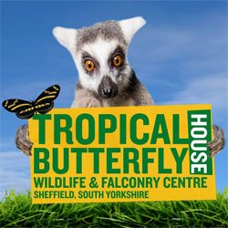 Tropical Butterfly House, Wildlife & Falconry Centre logo