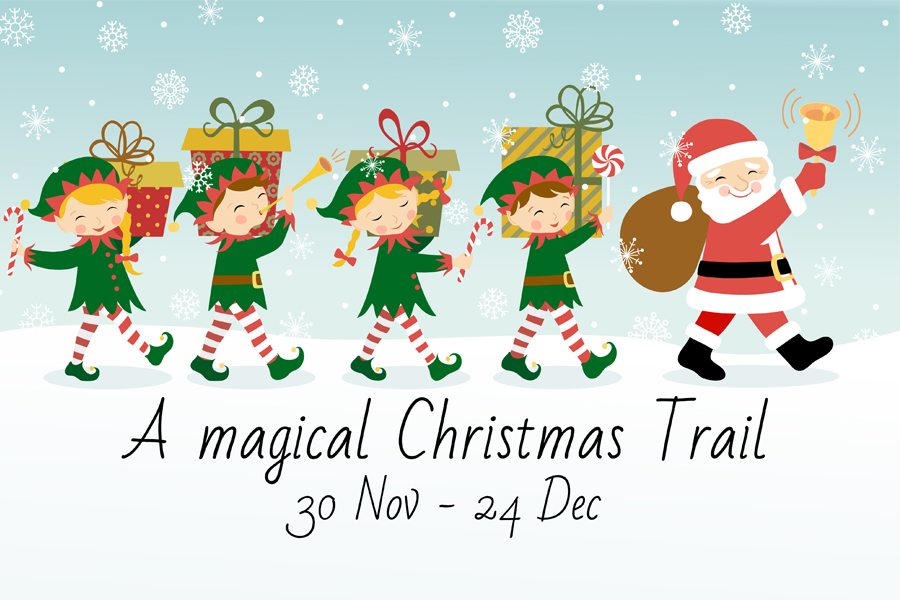 A Christmas Trail at Tropical Butterfly House