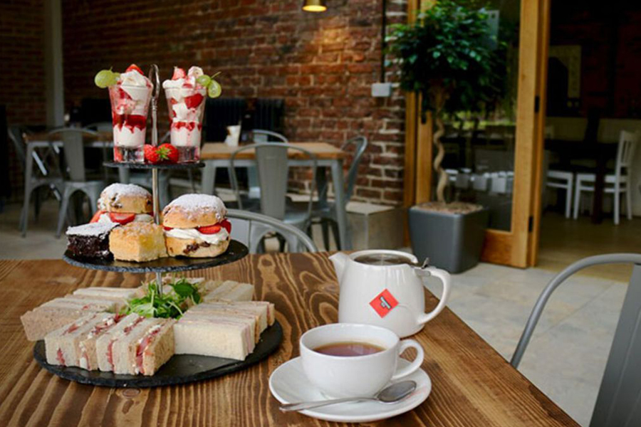 Festive Afternoon Tea at Yorkshire Wildlife Park
