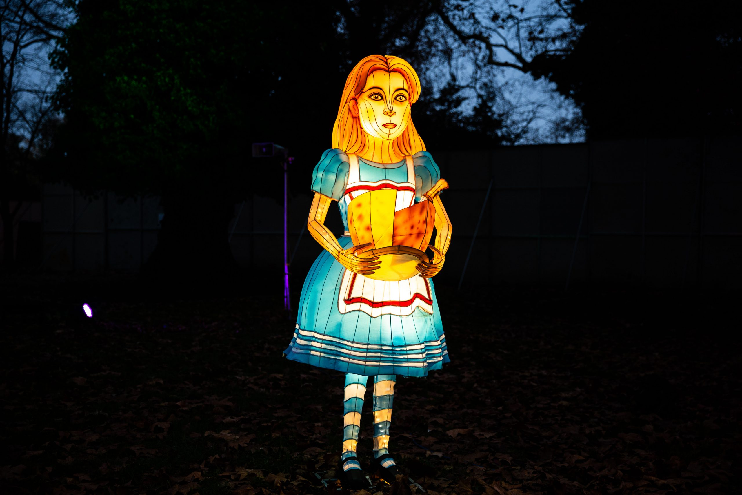Alice in Wonderland Giant Lantern as part of trail at Lightwater Valley