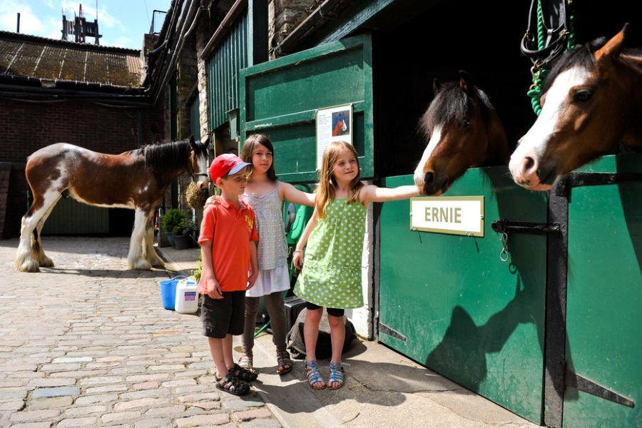 Children stroking pit ponies