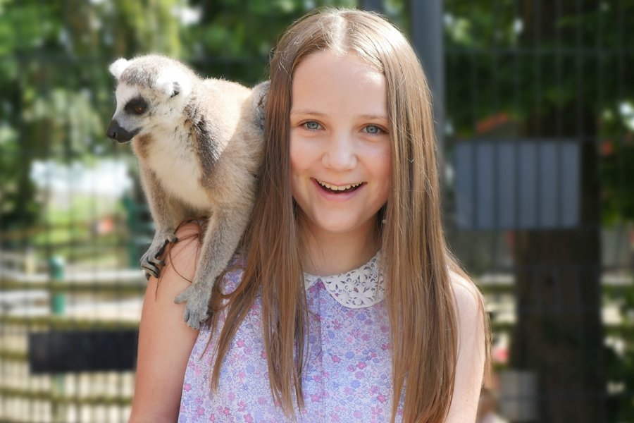Mad about Madagascar at Tropical Butterfly House Easter