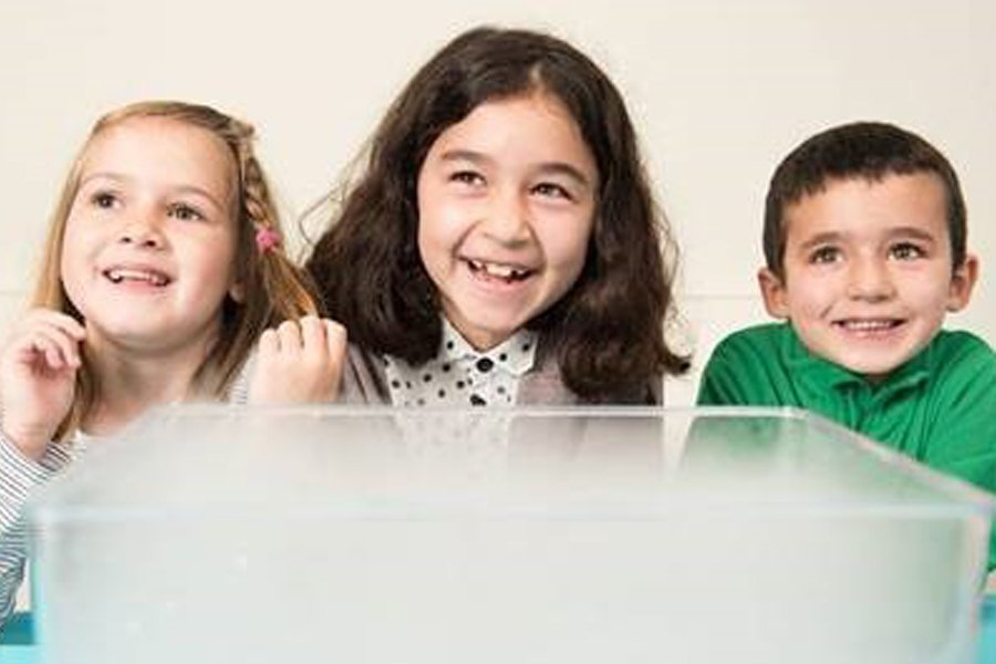 Thre children laughing abve a tub dry ice