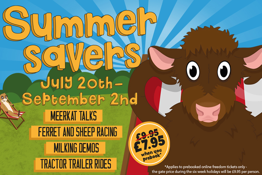Summer Savers at Cannon Hall Farm
