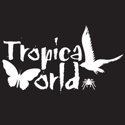 Tropical World, Leeds